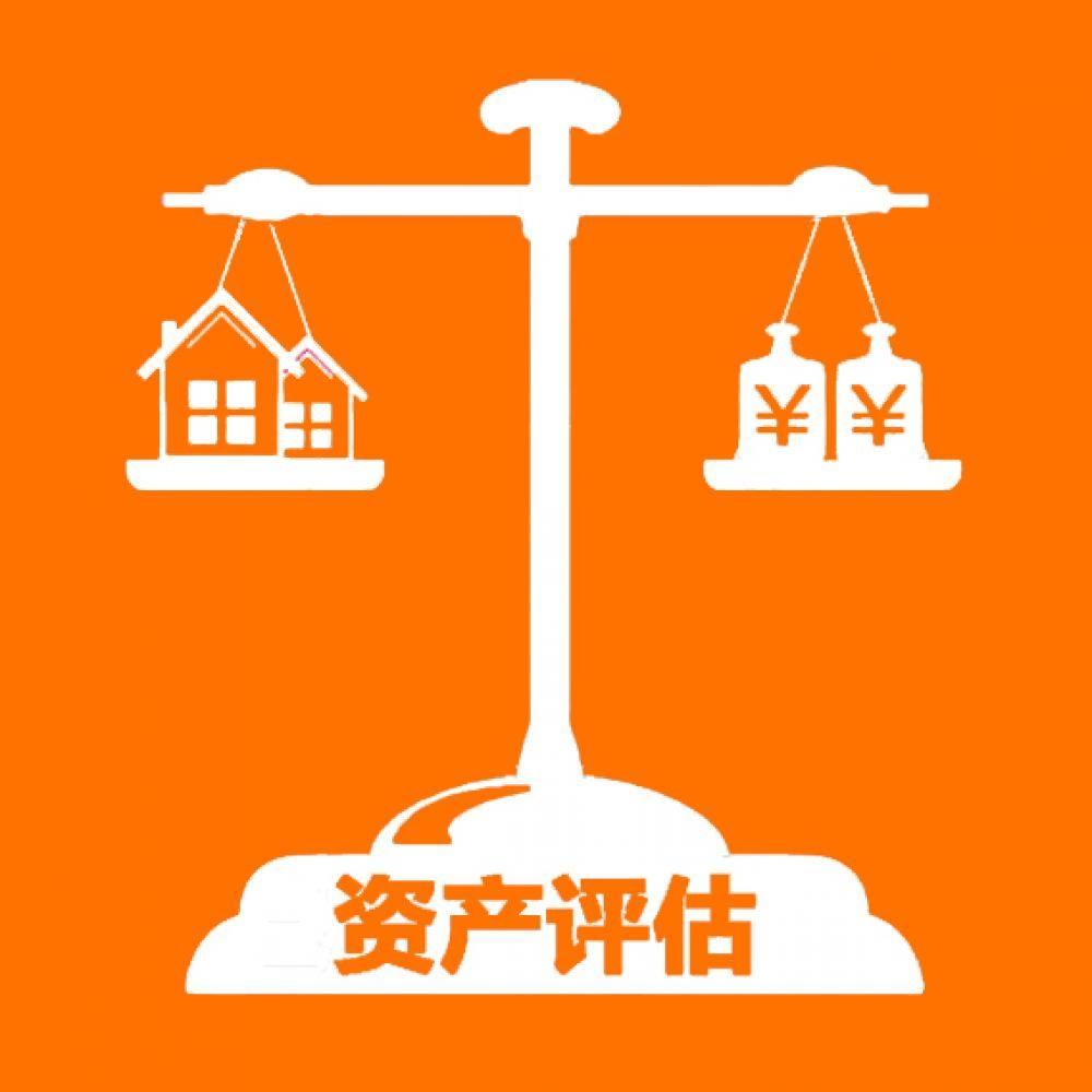 资产评估服务